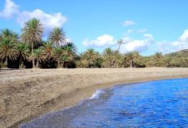 Φοινικόδασος Βάι, η παραλία